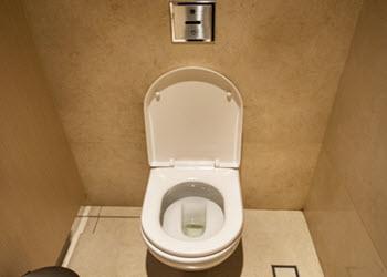 Hands-free Flushing